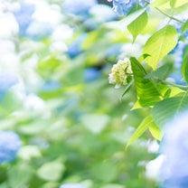 疲れを取って美しくなりたい<札幌の女性>への記事に添付されている画像