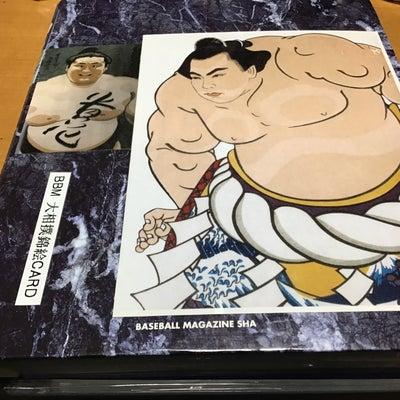 '97BBM大相撲錦絵カードの記事に添付されている画像
