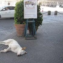 ナポリで見つけたものの記事に添付されている画像