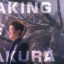 『Sakura』の記事に添付されている画像