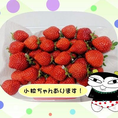 小粒イチゴ余裕あります!の記事に添付されている画像