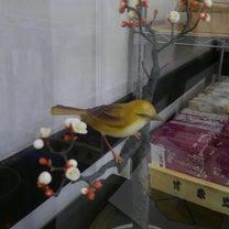 和菓子作り体験②の記事に添付されている画像