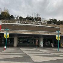 全日本卓球選手権 水谷&伊藤が優勝‼︎‼︎の記事に添付されている画像
