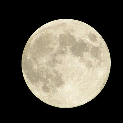 「満月・不思議なことが起こりやすいとき」1月21日のマヤ暦(KIN088)の記事に添付されている画像