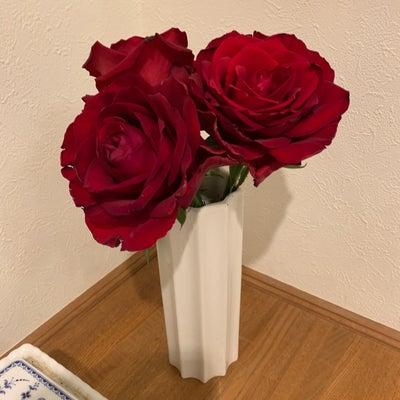 真紅のバラの記事に添付されている画像