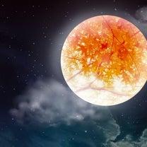 今日は、しし座の満月の記事に添付されている画像