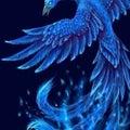#青の画像