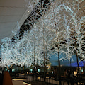 #羽田空港の画像