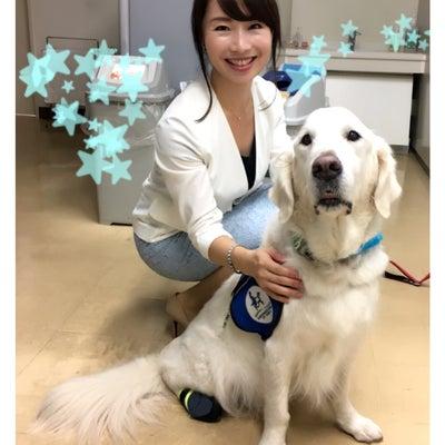 NHKスペシャル☆OAの記事に添付されている画像