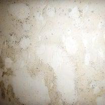 珪藻土を収納壁に塗ってはいけない!の記事に添付されている画像