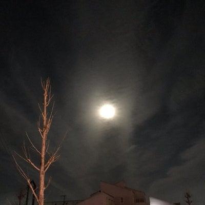 月がきれいな夜の記事に添付されている画像