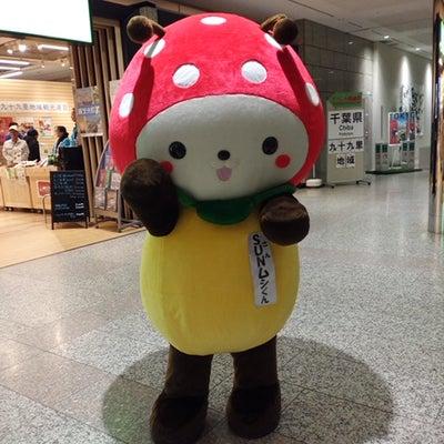 新宿区東京都庁全国観光PRコーナーで行われている特産品販売観光PRイベントでお会の記事に添付されている画像