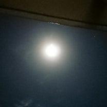 満月見れましたか(´・ω・`)?の記事に添付されている画像