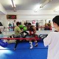 #キックボクシングの画像