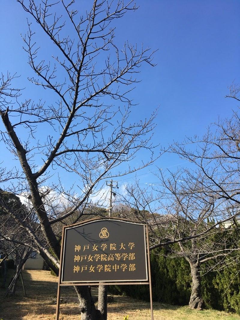 中学 神戸 偏差 値 女学院