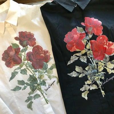 アメリカへの旅 11【かぐや姫の赤いバラのブラウス】の記事に添付されている画像
