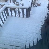 はじめての積雪の朝^^の記事に添付されている画像