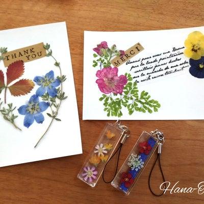 【押し花体験会】2月は木曜日も可能ですの記事に添付されている画像