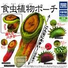 [生き物]バナナアニマルズ  丸見えアクリルマスコット 食虫植物ポーチの記事より