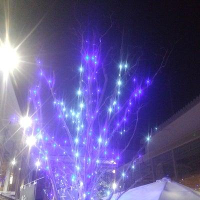今年のクリスマス楽しかった?の記事に添付されている画像