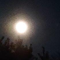 満月の夜に想うの記事に添付されている画像