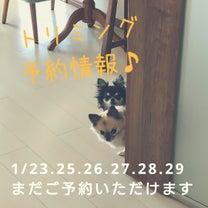 1/22トリミングpart2♪縁を感じる!の記事に添付されている画像