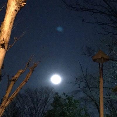 2月5日水瓶座新月は人生変えるチャンス!の記事に添付されている画像
