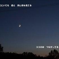同じ月を見てるの記事に添付されている画像