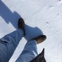 堅雪かんこ、しみ雪しんこの記事に添付されている画像