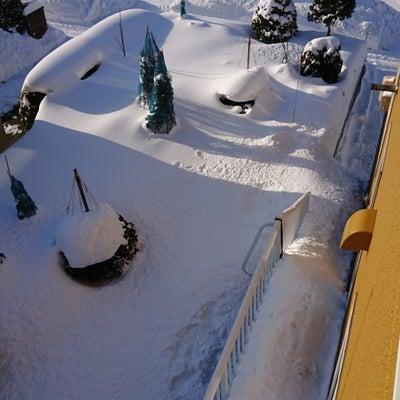 札幌ですがの記事に添付されている画像