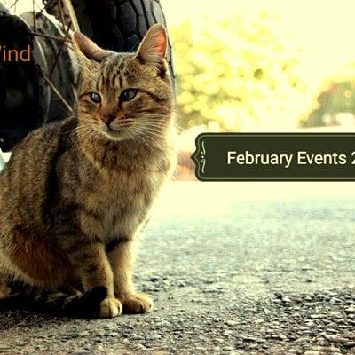 2月のプチイベントのお知らせです!の記事に添付されている画像