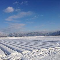 雪なく筋肉痛もない今年の冬の記事に添付されている画像