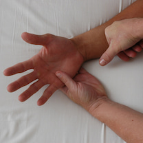 スーパーベーシック筋膜リリースセミナー@広尾 3月&4月スケジュールの記事に添付されている画像