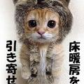 田巻の「自愛アカデミー」もう軸ブレしない!~恋愛不器用からの卒業~