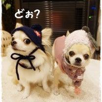 冬は帽子とマフラーを♪の記事に添付されている画像