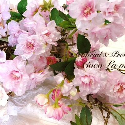 桜の季節が待ち遠しい*試作中の桜アレンジの記事に添付されている画像