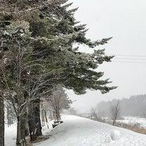 スマホで大雪の光景を撮ってみましたの記事に添付されている画像