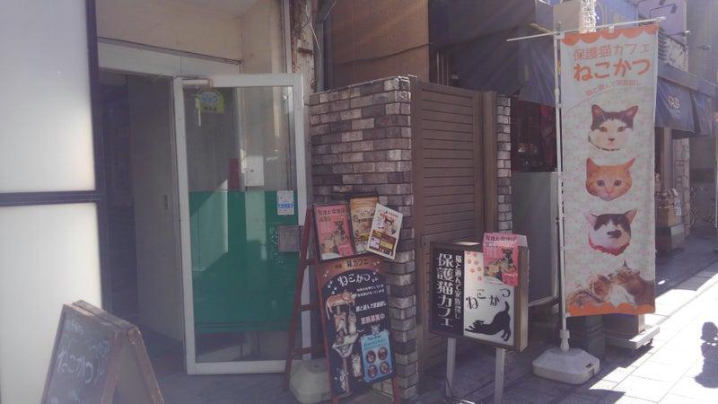 「ねこかつ川越店」の画像検索結果