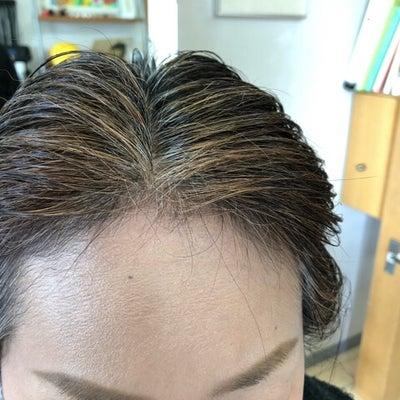 天然100%のヘナ・ハナヘナで白髪染めの染まり具合の記事に添付されている画像