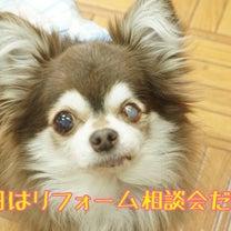 明日はリフォーム相談会(о´∀`о)の記事に添付されている画像