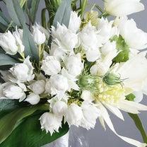 虫・雑菌フリーで衛生的に安心な花の記事に添付されている画像