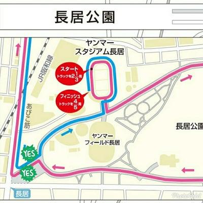 明日は大阪国際女子マラソン!の応援の記事に添付されている画像