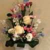 1月のお花の画像