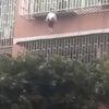 ▼唸声中国映像/3階からぶら下がった2歳女児を救うスパイダーマン・・・の画像