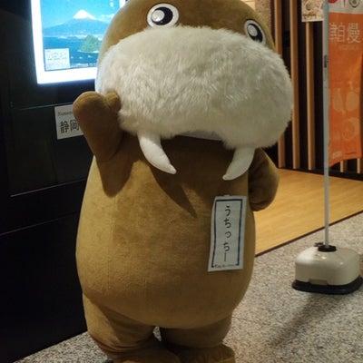 新宿区東京都庁全国観光PRコーナーで行われている沼津自慢キャンペーンIN東京都庁の記事に添付されている画像