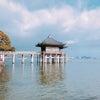 浮御堂と琵琶湖。の画像