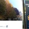 日本発達神経科学学会・学術集会 / 東京大学 駒場キャンパスの画像