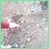 ♡公園遊びの中の一コマ~第二弾♡の画像