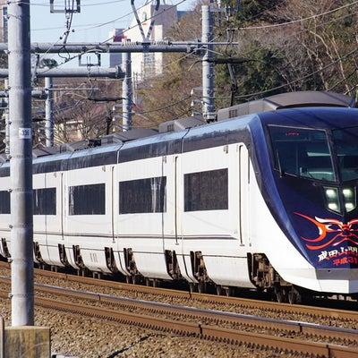 2019.1.27 成田山開運号 平成31年版の記事に添付されている画像