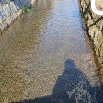 吉野ヶ里町の川の水の記事に添付されている画像
